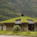 Дерновая или земельная крыша