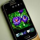 Самсунг продвигает линейку устройств наTizenOS