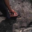 В КНР обнаружили огромные окаменелые следы ног
