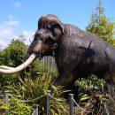 Палеонтологи поведали, почему вымерли последние мамонты наЗемле