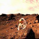 Участники опыта наГавайях провели год в«марсианских условиях»