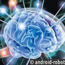 Ученые: Накровообращение вмозге влияет физическая активность человека