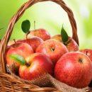 Ученые: употребление впищу яблок влияет на длительность жизни