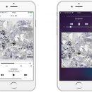 ВКонтакте возвращает музыку в приложение для iOS