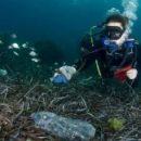 Экологи призвали супермаркеты и магазины отказаться от пластика