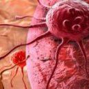 Биологи нашли простой способ для уничтожения раковых клеток путём их саморазрушения