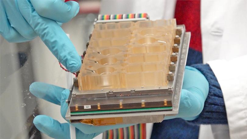 Ученые воссоздали женский менструальный цикл на чипе