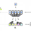 Приложение Gboard изучает поведение пользователя без отправки данных в Google