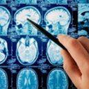 Учёные создали искусственный интеллект, способный читать мысли