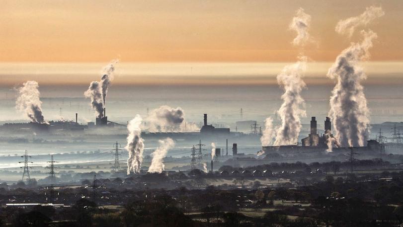 Генетически модифицированные дрожжи уничтожают загрязнение тяжёлыми металлами