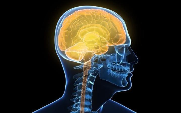 Компьютерные игры с элементами аналитики усиливают память и могут снизить риск развития деменции