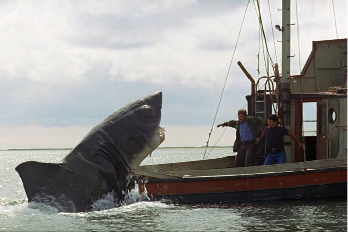 Эксперт: в чём Голливуд ошибается, показывая акул в фильмах ужасов