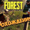 Игра на выживание: как выжить в лесу с аборигенами?