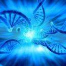 Более 99 процентов микробов в организме человека неизвестно науке