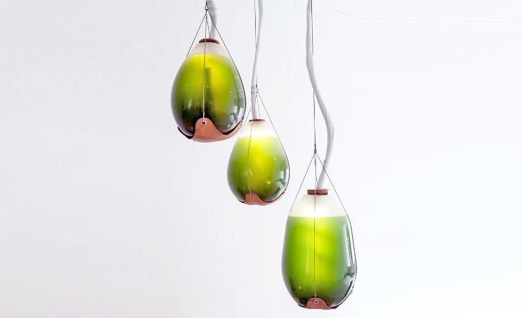 Шесть зелёных дизайнерских разработок на основе водорослей