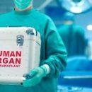 Наночастицы обманывают организм, заставляя его принимать чужеродный имплант за свой