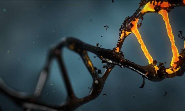 Учёные получили новую информацию о том, почему мы стареем