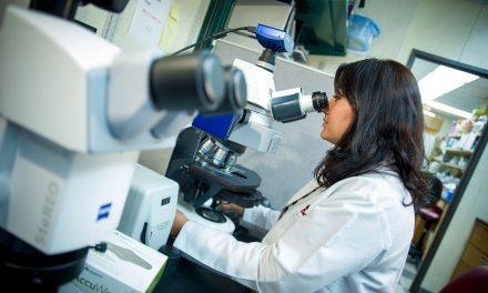 Учёные обнаружили «выключатель», который уничтожает любую раковую клетку