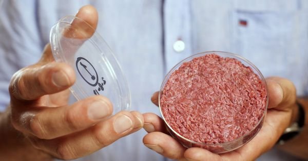 По мнению Ричарда Бренсона, очень скоро убийства животных с целью употребления в пищу уйдут в прошлое