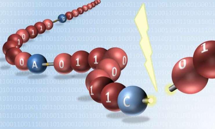 Впервые в мире осуществлена цифровая запись информации на синтезированные мономеры