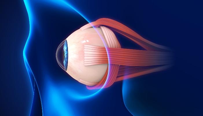 Новое устройство доставки лекарств лечит глаукому изнутри глаза