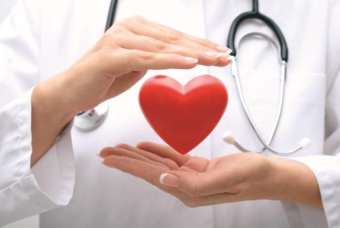 Новый препарат эффективно «растапливает» жировые бляшки в артериях