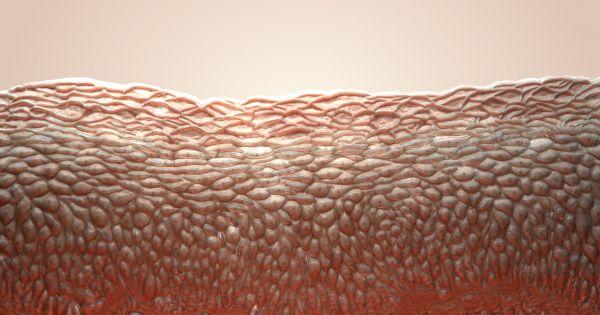 Врачи реконструировали 80 процентов кожи больного мальчика генетически модифицированными клетками