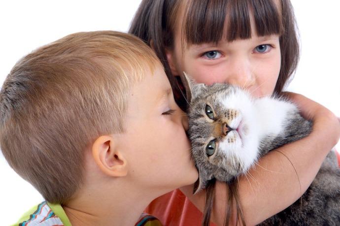 Кошки могут предотвратить астму у детей