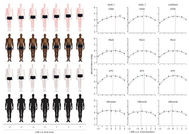 Более длинные ноги делают мужчин привлекательнее в глазах женщин
