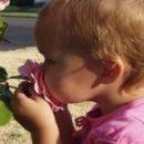Наука подтверждает: иногда полезно остановиться и вдохнуть запах цветка на лужайке