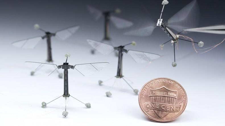 Крошечные роботы передвигаются и думают как насекомые
