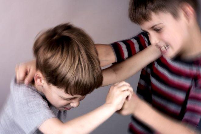 Агрессия в раннем детстве: корни — в генетике, но влияет и окружение