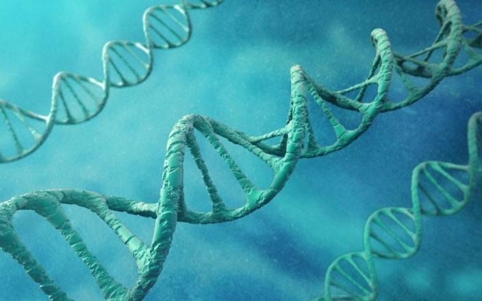 Учёные обнаружили гены, связанные с гомосексуализмом