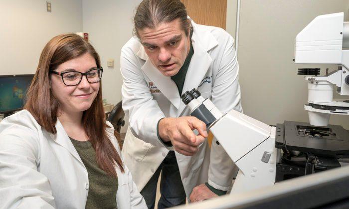 Новое исследование может изменить взгляды учёных на происхождение раковых заболеваний
