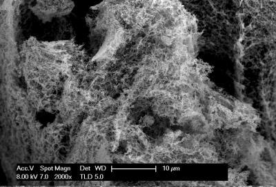 Эффективная технология получения водорода из воды – важный шаг на пути к водородной энергетике