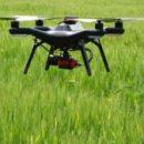 Урожаи сельскохозяйственных культур будут собирать без участия человека