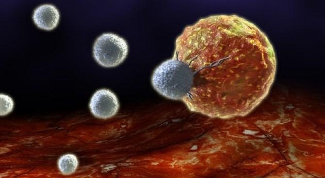 Исследователи показали — в лечении рака размер имеет значение