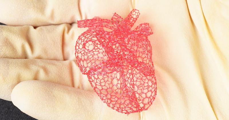 Напечатанный на 3D-принтере сахарный каркас помогает вырастить органы и растворяется