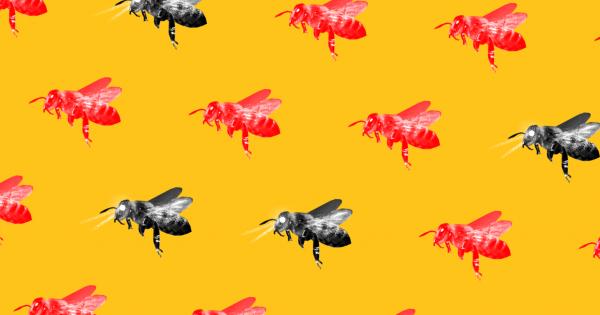 Роботы-пчёлы могут внедряться в сообщества насекомых с целью предотвратить их вымирание