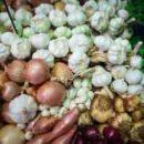 Почему лук и чеснок полезны для кишечника