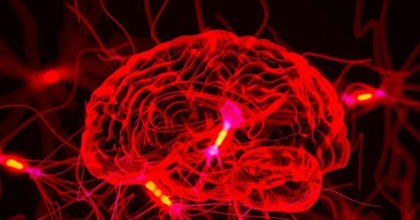 В поисках способов борьбы с хроническими заболеваниями учёные расшифровывают сигналы мозга