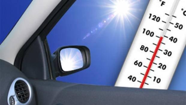 Всего за час автомобиль может нагреться под лучами солнца до смертельно опасной температуры