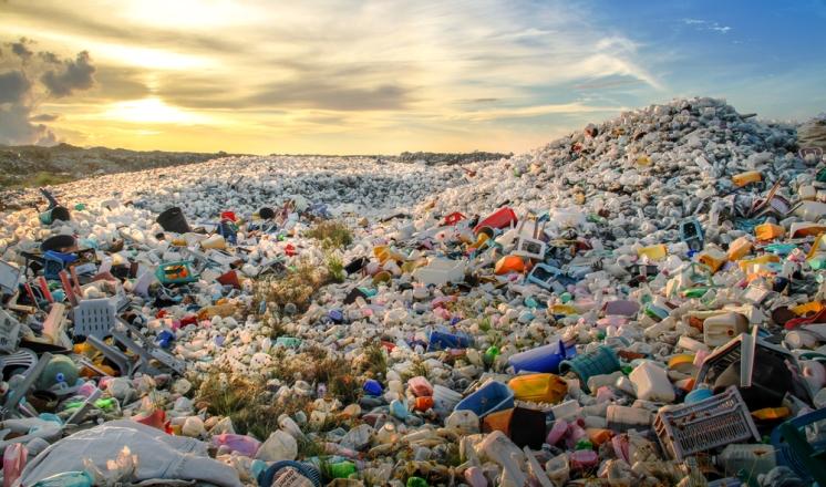 Химикам удалось синтезировать биоразлагаемую и биовозобновляемую пластмассу, которая может заменить пластмассы из углеводородов