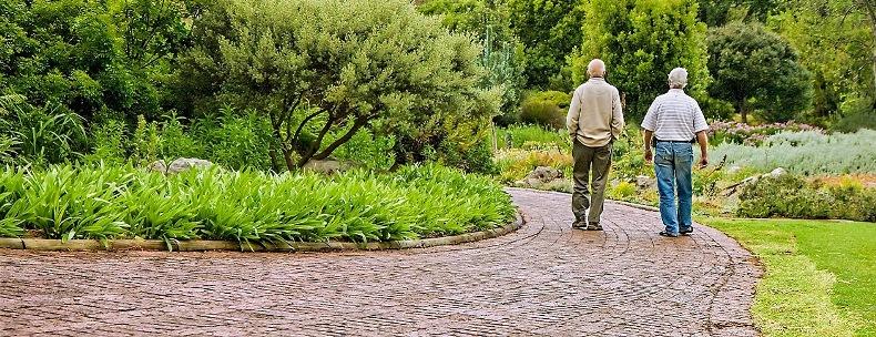 Почему жизнь на природе среди растительности помогает предотвратить деменцию