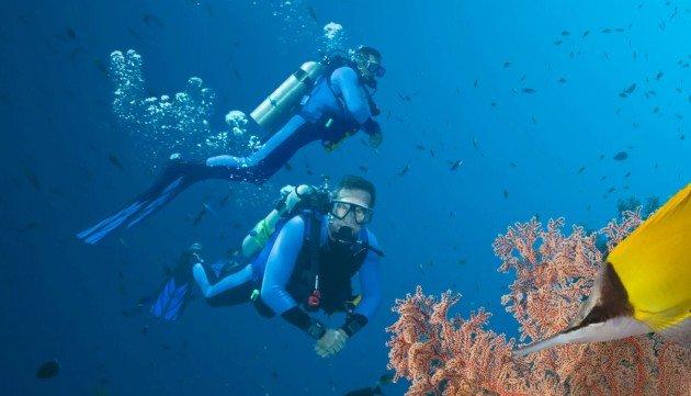 Среди аквалангистов растет число случаев сердечных приступов под водой