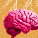 Электрошоковое воздействие на мозг человека снижает его агрессивность