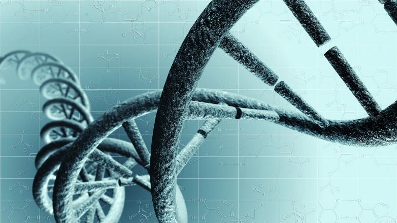 Ученые научились перепрограммировать Т-клетки для борьбы с аутоиммунными заболеваниями
