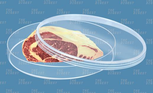 У человечества будет много альтернатив традиционному мясу