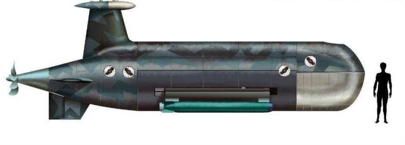 Россия работает над созданием нового подводного ударного дрона «Цефалопод»