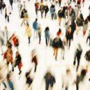 то общего между дрозофилами и электронами: исследователи используют физику для прогнозирования поведения толпы